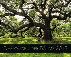 Weisheit der Bäume 2019 von Cook,  Diane, Jenshel,  Len