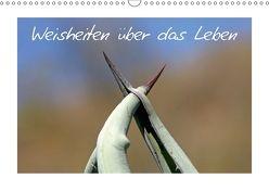 Weisheiten über das Leben / CH-Version (Wandkalender 2018 DIN A3 quer) von Kaiser,  Ralf