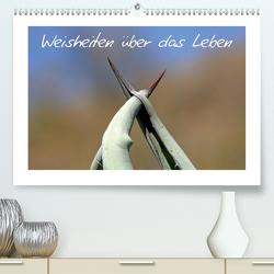 Weisheiten über das Leben (Premium, hochwertiger DIN A2 Wandkalender 2021, Kunstdruck in Hochglanz) von Kaiser,  Ralf