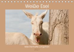 Weiße Esel – Märchenhafte Langohren (Tischkalender 2021 DIN A5 quer) von Bölts,  Meike
