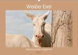 Weiße Esel – Märchenhafte Langohren (Wandkalender 2021 DIN A2 quer) von Bölts,  Meike