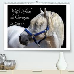 Weiße Pferde der Camargue in Bayern (Premium, hochwertiger DIN A2 Wandkalender 2020, Kunstdruck in Hochglanz) von brigitte jaritz,  photography