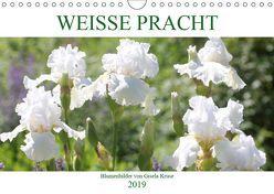 Weiße Pracht (Wandkalender 2019 DIN A4 quer) von Kruse,  Gisela