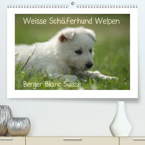 Weisse Schäferhund Welpen – Berger Blanc Suisse (Premium, hochwertiger DIN A2 Wandkalender 2020, Kunstdruck in Hochglanz) von Riedel,  Tanja
