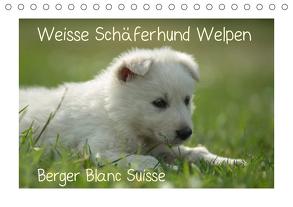 Weisse Schäferhund Welpen – Berger Blanc Suisse (Tischkalender 2020 DIN A5 quer) von Riedel,  Tanja