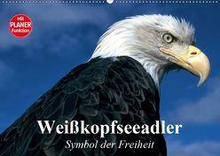 Weißkopfseeadler. Symbol der Freiheit (Wandkalender 2019 DIN A2 quer) von Stanzer,  Elisabeth