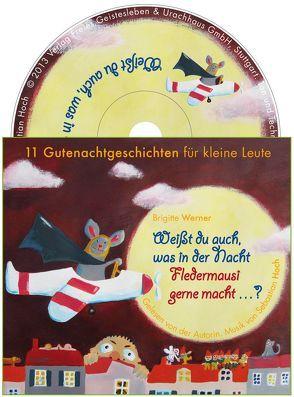 Weißt du auch, was in der Nacht Fledermausi gerne macht? von Hoch,  Sebastian, Müller,  Birte, Werner,  Brigitte