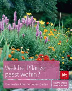 Welche Pflanze passt wohin? von Borstell,  Ursel, Hagen,  Thomas