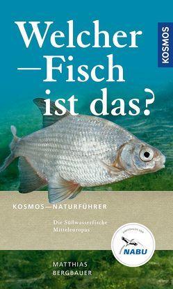 Welcher Fisch ist das? von Bergbauer,  Matthias