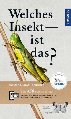 Welches Insekt ist das? von Bellmann,  Heiko