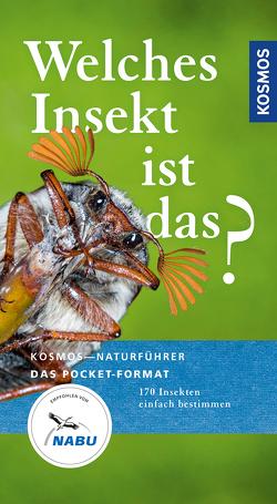 Welches Insekt ist das? von Bellmann,  Dr. Heiko