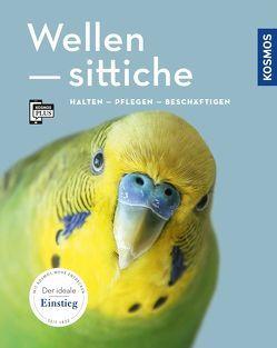 Wellensittiche von Größle,  Bernhard