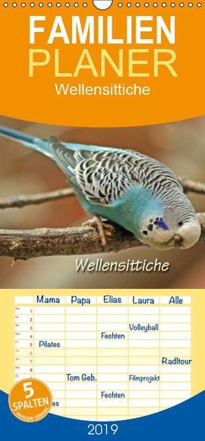 Wellensittiche – Familienplaner hoch (Wandkalender 2019 , 21 cm x 45 cm, hoch) von Mielewczyk,  Barbara