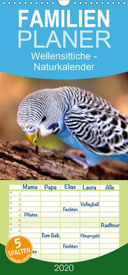 Wellensittiche – Naturkalender – Familienplaner hoch (Wandkalender 2020 , 21 cm x 45 cm, hoch) von Bergmann,  Björn
