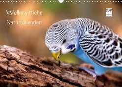 Wellensittiche – Naturkalender (Wandkalender 2018 DIN A3 quer) von Bergmann,  Björn