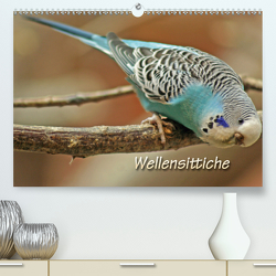 Wellensittiche (Premium, hochwertiger DIN A2 Wandkalender 2020, Kunstdruck in Hochglanz) von Mielewczyk,  Barbara