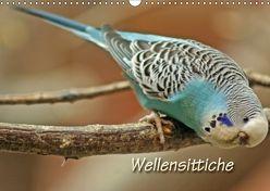 Wellensittiche (Wandkalender 2018 DIN A3 quer) von Mielewczyk,  Barbara