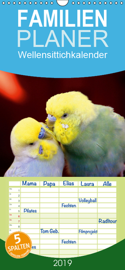 Wellensittichkalender – Familienplaner hoch (Wandkalender 2019 , 21 cm x 45 cm, hoch) von Bergmann,  Björn