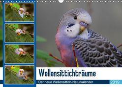 Wellensittichträume – Der neue Wellensittich-Naturkalender (Wandkalender 2019 DIN A3 quer) von Bergmann,  Björn