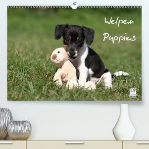 Welpen – Puppies (Premium, hochwertiger DIN A2 Wandkalender 2021, Kunstdruck in Hochglanz) von Hutfluss,  Jeanette