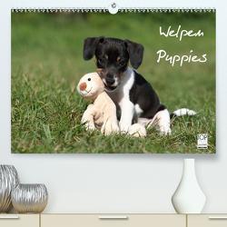 Welpen – Puppies (Premium, hochwertiger DIN A2 Wandkalender 2020, Kunstdruck in Hochglanz) von Hutfluss,  Jeanette