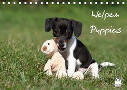 Welpen – Puppies (Tischkalender 2019 DIN A5 quer) von Hutfluss,  Jeanette