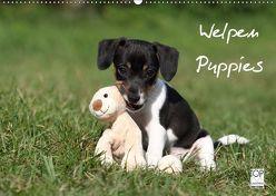 Welpen – Puppies (Wandkalender 2019 DIN A2 quer) von Hutfluss,  Jeanette