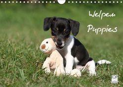 Welpen – Puppies (Wandkalender 2019 DIN A4 quer) von Hutfluss,  Jeanette