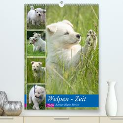 Welpen Zeit – Berger Blanc Suisse (Premium, hochwertiger DIN A2 Wandkalender 2020, Kunstdruck in Hochglanz) von Riedel,  Tanja