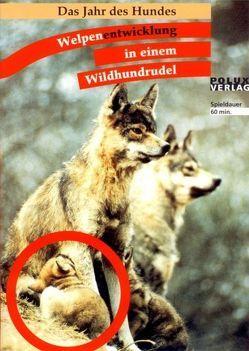 Welpenentwicklung in einem Wildhundrudel von Leidhold,  Joachim, Trumler,  Erika