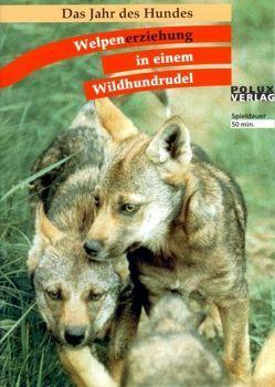 Welpenerziehung in einem Wildhundrudel von Leidhold,  Joachim, Trumler,  Gerhard