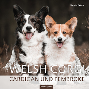 Welsh Corgi Cardigan und Pembroke von Bohne,  Claudia