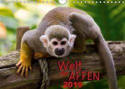 Welt der Affen (Wandkalender 2019 DIN A4 quer) von Reznicek Photography,  M.