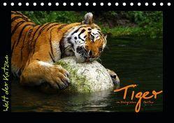 Welt der Katzen – Tiger (Tischkalender 2019 DIN A5 quer) von Skupin,  Marcus