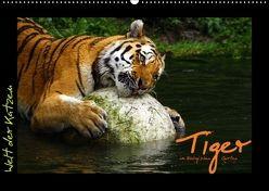 Welt der Katzen – Tiger (Wandkalender 2018 DIN A2 quer) von Skupin,  Marcus