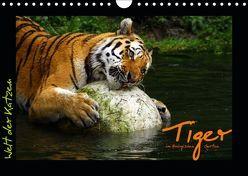 Welt der Katzen – Tiger (Wandkalender 2019 DIN A4 quer) von Skupin,  Marcus