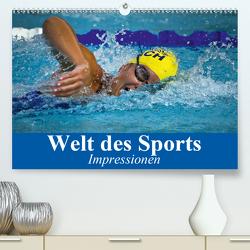 Welt des Sports. Impressionen (Premium, hochwertiger DIN A2 Wandkalender 2021, Kunstdruck in Hochglanz) von Stanzer,  Elisabeth