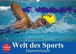 Welt des Sports. Impressionen (Wandkalender 2018 DIN A3 quer) von Stanzer,  Elisabeth