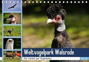 Weltvogelpark Walsrode – Die Vielfalt der Vogelarten (Tischkalender 2018 DIN A5 quer) von Gayde Quelle: Weltvogelpark Walsrode,  Frank