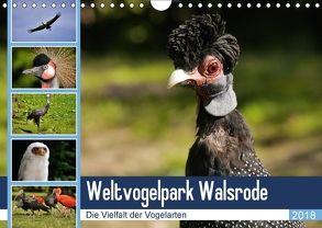 Weltvogelpark Walsrode – Die Vielfalt der Vogelarten (Wandkalender 2018 DIN A4 quer) von Gayde Quelle: Weltvogelpark Walsrode,  Frank