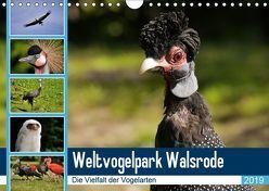 Weltvogelpark Walsrode – Die Vielfalt der Vogelarten (Wandkalender 2019 DIN A4 quer) von Gayde Quelle: Weltvogelpark Walsrode,  Frank