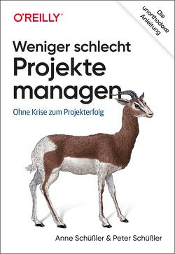 Weniger schlecht Projekte managen von Schüßler,  Anne, Schüßler,  Peter