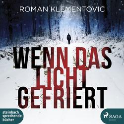 Wenn das Licht gefriert von Klementovic,  Roman, Wagener,  Ulla