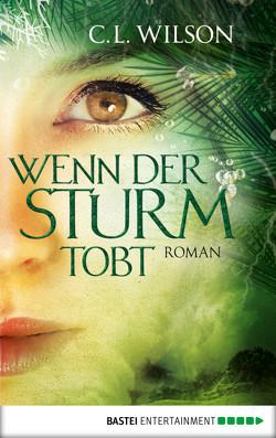 Wenn der Sturm tobt von Nirschl,  Anita, Wilson,  C.L.
