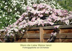 Wenn die Liebe Walzer tanzt von Kehsler,  Cilli, Wiechmann,  Peter