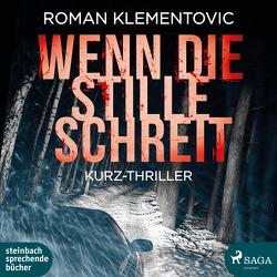 Wenn die Stille schreit von Klementovic,  Roman, Wagener,  Ulla