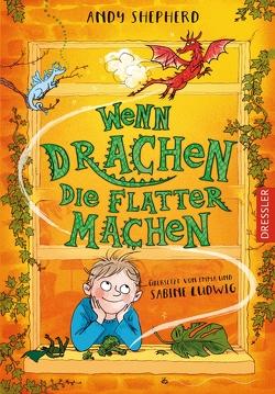 Wenn Drachen die Flatter machen von Ludwig,  Emma, Ludwig,  Sabine, Ogilvie,  Sara, Shepherd,  Andy