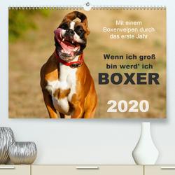 Wenn ich groß bin werd' ich Boxer (Premium, hochwertiger DIN A2 Wandkalender 2020, Kunstdruck in Hochglanz) von Mielke,  Kerstin
