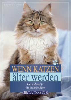 Wenn Katzen älter werden von Vorbrich,  Susanne