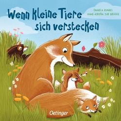 Wenn kleine Tiere sich verstecken von Kunkel,  Daniela, zur Brügge,  Anne-Kristin